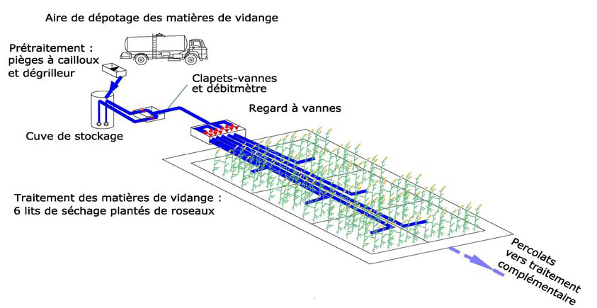 PhragmicompostageMV2